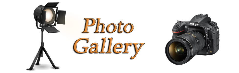 Photo Gallery Banner